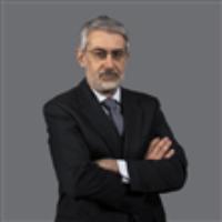 Antonios D Tsavdaridis