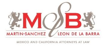 Martin-Sanchez & Leon de la Barra, LLP logo