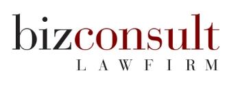 Bizconsult LLC logo