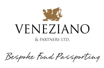Veneziano & Partners Ltd logo